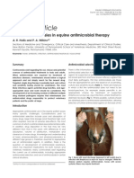 Current controversies in equine antimicrobial therapy