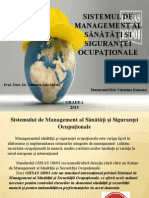 management integrat