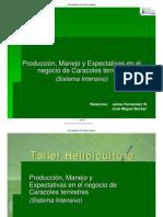 intensivo_presentacion