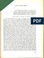 185231939-Sette-tesi-sul-controllo-operaio.pdf
