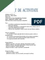 Comisie-proiect de activitate