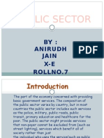 Public Sector PPT