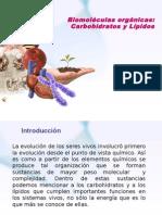 Clase BL-3 2010 (PPTminimizer)