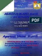 AGARICUS BLAZEI _ UN MIRACOL.ppt