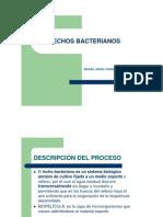 14._Lechos_bacterianos