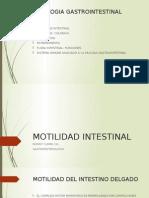 Fisiologia - Motilidad, Flora y GALT Gastrointestinal