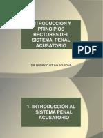Principios Rectores Del Sistema Penal Acusatorio ( Jun 2015)