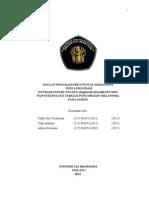 PKM-P 2015 cobacoba