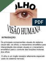OLHO E VISAO HUMANA.ppt