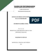 Sistema de Produccion de Fresa de Altas Densidades