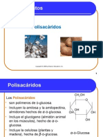 14_6 Polisacaridos