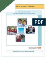 3ro Estudiante Funcion Clasificacion Plantas (1)