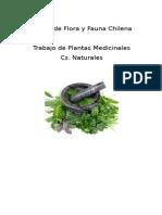 Álbum de Flora y Fauna Chilena