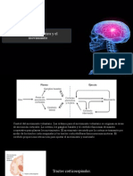 Control de la Postura y el Movimiento.ppt