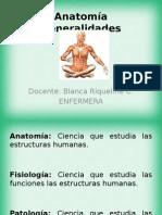 Segunda Clase de Anatomia