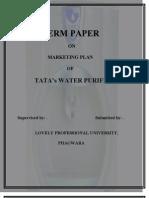 Final Mark Term Paper