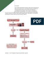 Penegakan Diagnosis Dan Tatalaksana Bubo Ingunal