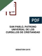 GAYA SanPablo PatronoMCC