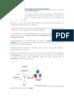 Psicología genética.doc