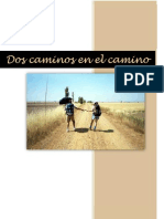 Novela Dos Caminos en El Camino
