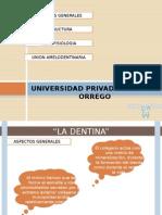 Gerson Expo de Dentina