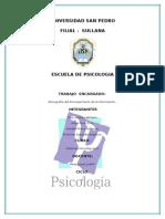 13- PROCESAMIENTO DE INFORMACION.doc