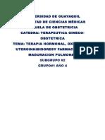 Carpeta de terapeutica grupo 2.doc