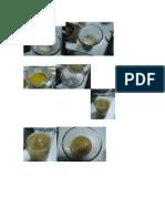 fotos bioquimica.docx