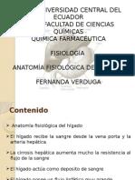 Anatomía Fisiológica Del Hígado