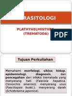 Parasitologi Plathyhelminthes Trematoda - Andareas