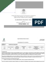 PROGRAMA ANALITICO PAG WEB-2015-A.doc
