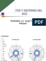 Iridologia Aparatos y Sistemas Del Iris