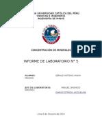informe 5 concentra