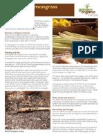 FactsheetLemongrass.pdf