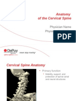 Cervical Anatomy