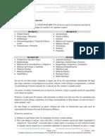 e37 Met Proceso Seleccion 2013