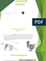 Extincion de Animales Presentacion
