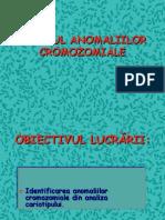 Anomalii Cromozomiale