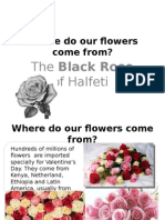 Where Do Our Flowers Come From