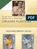Cirugias_Plasticas_2015
