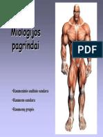 FF raumenys.pdf