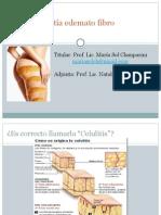 8. Pefe Obesidad 2015