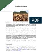 medio ambiente y desarrollo sostenible