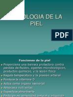 Patologia Sistema Tegumentario (Piel)