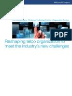 Reshaping Telco Organizations