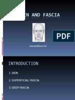 Skin & Fascia