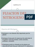 Fijacion de Nitrogeno