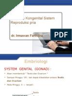 Kelainan Kongenital Sistem Reproduksi Pria
