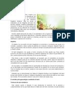 Algunas técnicas de la tarot terapia.pdf