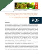 botanicaXolalpanTeopancazco.pdf